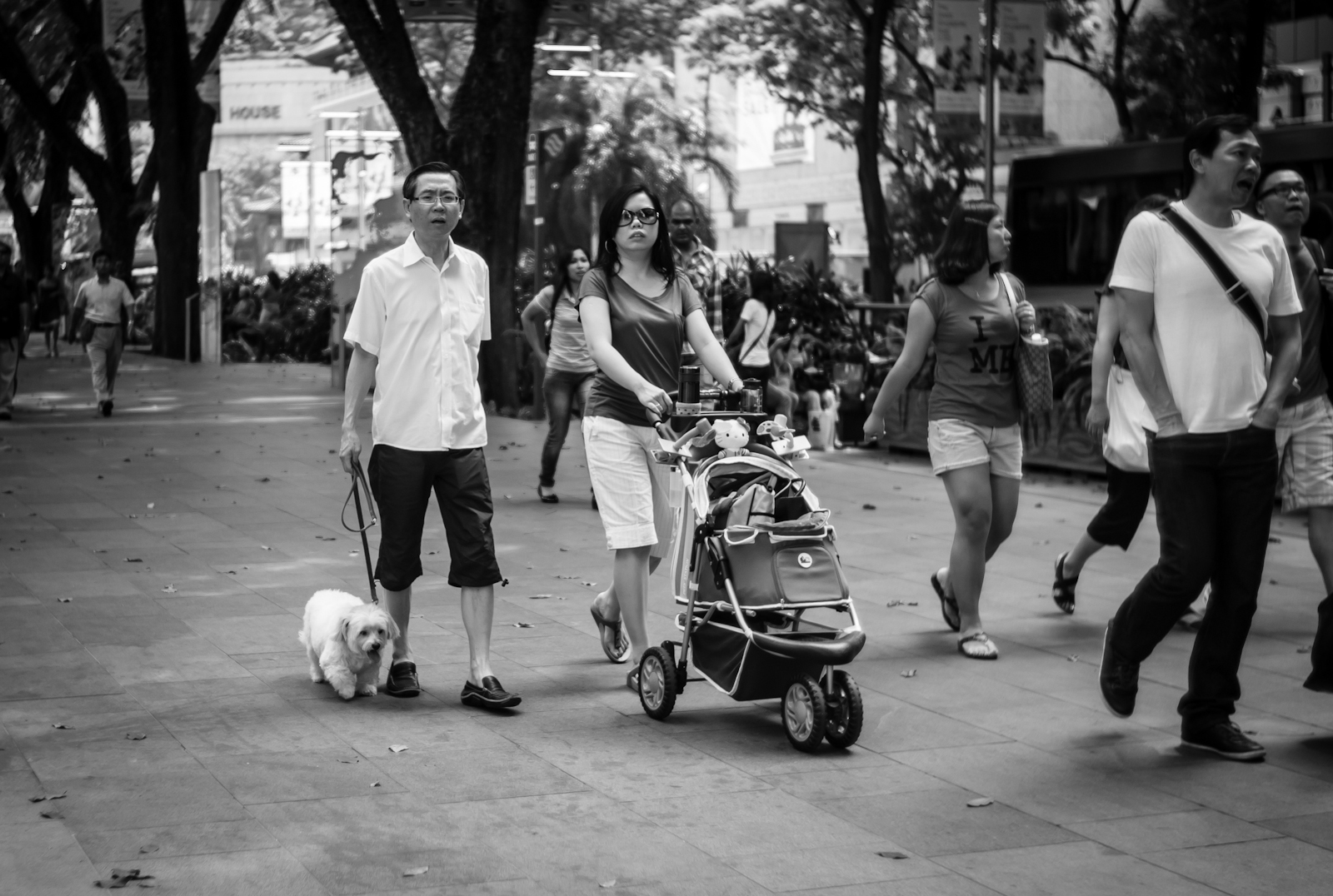 Street photography - Couple pushing a pram for their pet dog