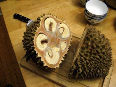 Wrong way to open a durian