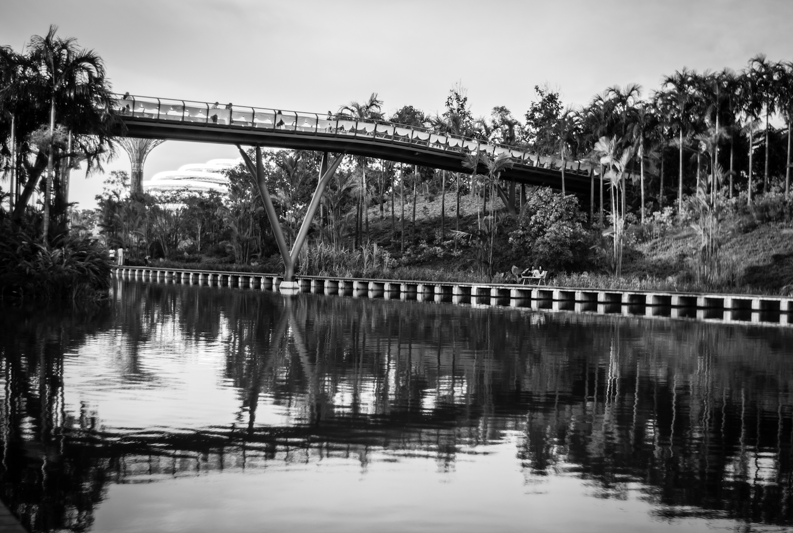 A bridge and its reflection in the water